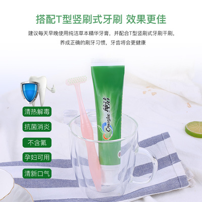 纯洁美白清火牙膏清新去口气亮白养护牙膏植物配方120g薄荷香型