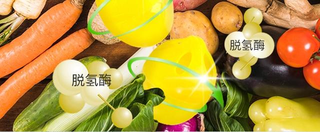 冰箱除味蛋_08.jpg