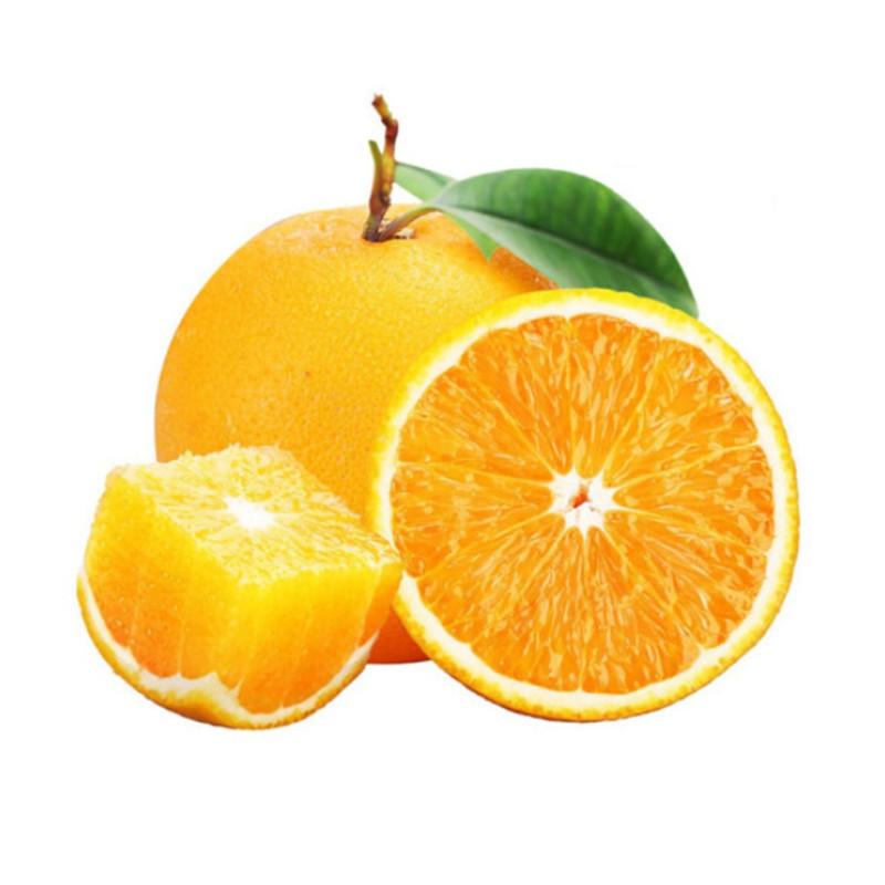 江西赣南脐橙5斤 单果70mm起
