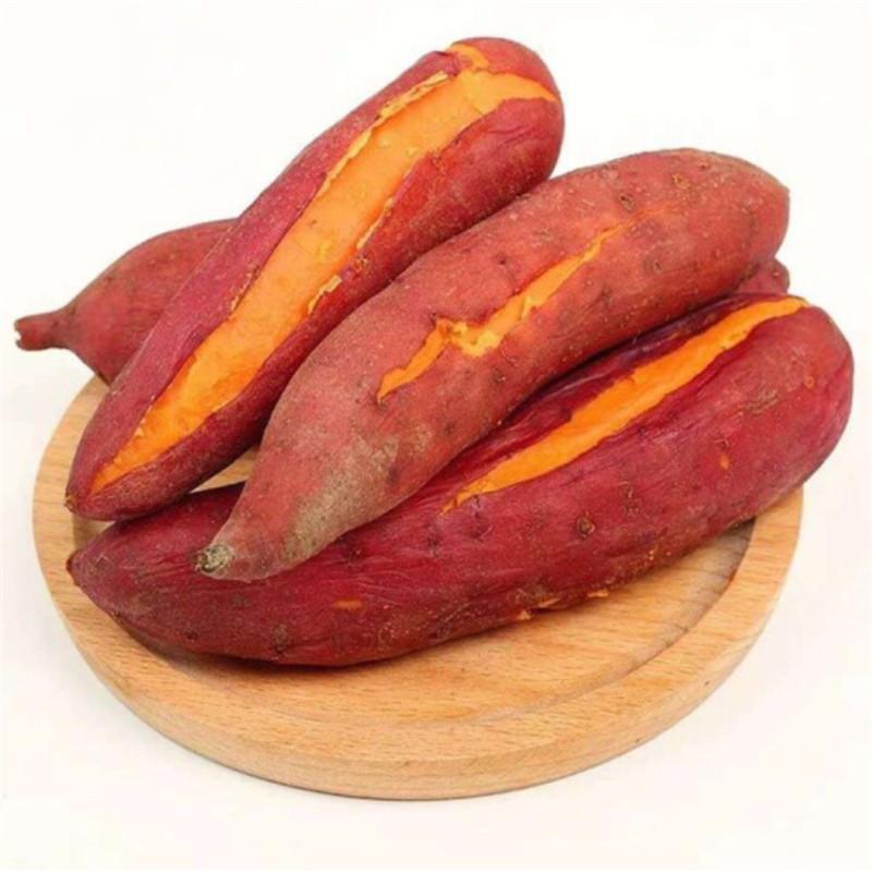 【远庄壹品】新鲜农家自种西瓜红蜜薯红薯5斤装大果(150g起)