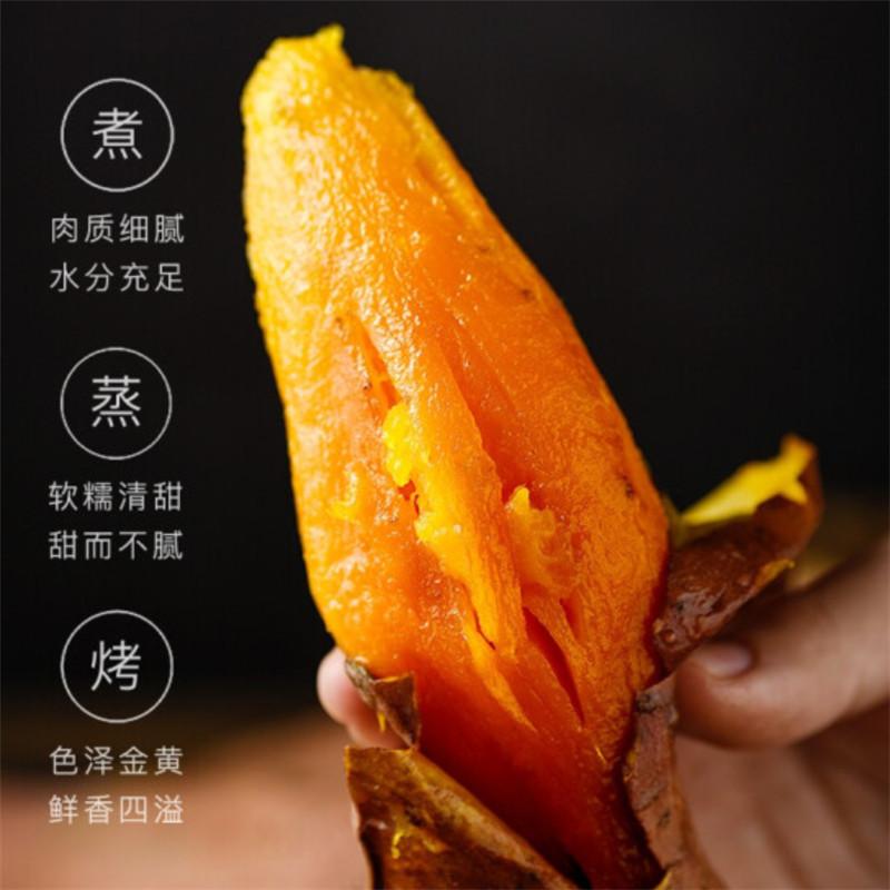 【远庄壹品】新鲜农家自种西瓜红蜜薯红薯5斤装中果(50-150g)