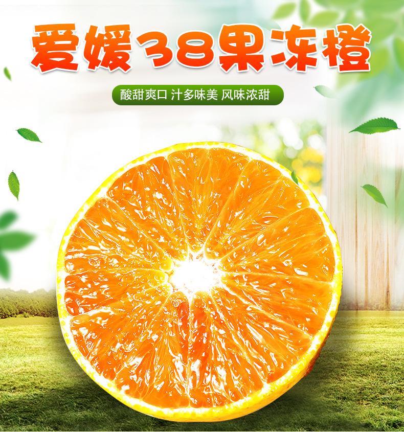 四川爱媛果冻橙 大量发货新鲜水果 橙子 新鲜水果