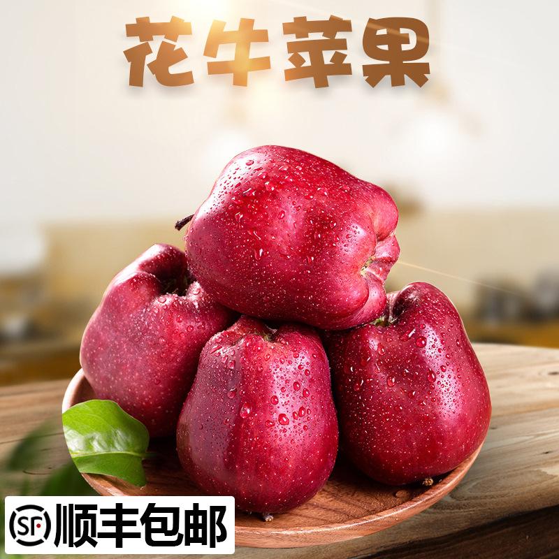 顺丰发货 花牛苹果  新鲜水果
