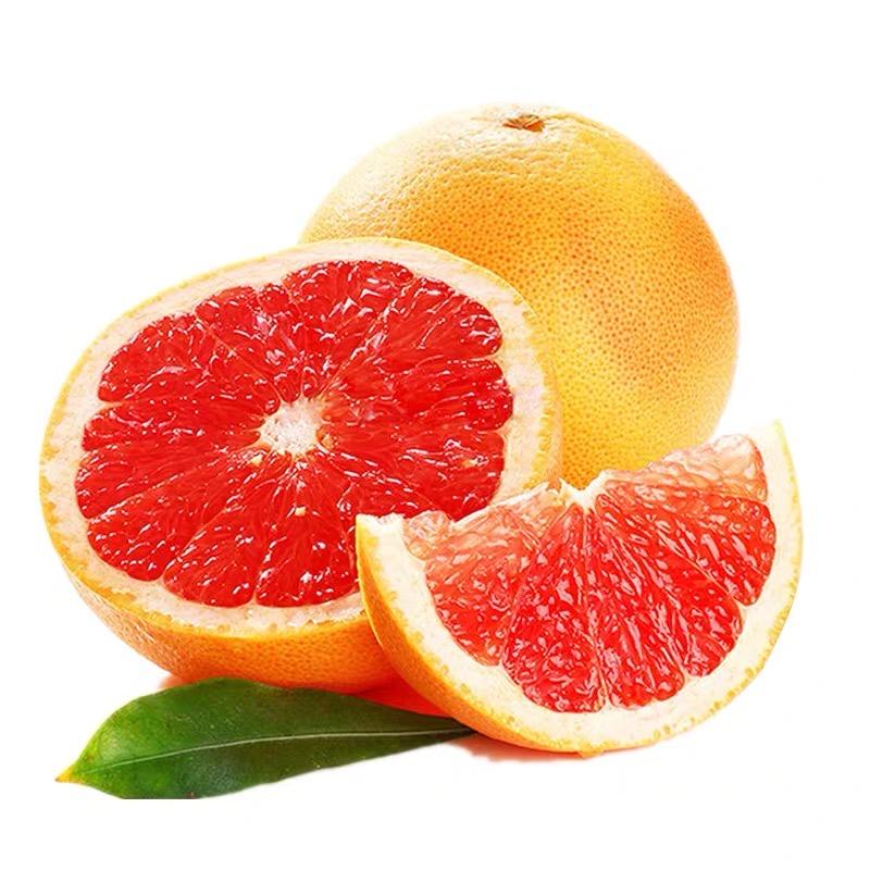 南菲西柚 新鲜营养的孕妇水果 酸甜微苦 4个/8个